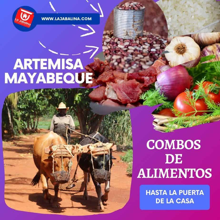 combos-artemisa-mayabque