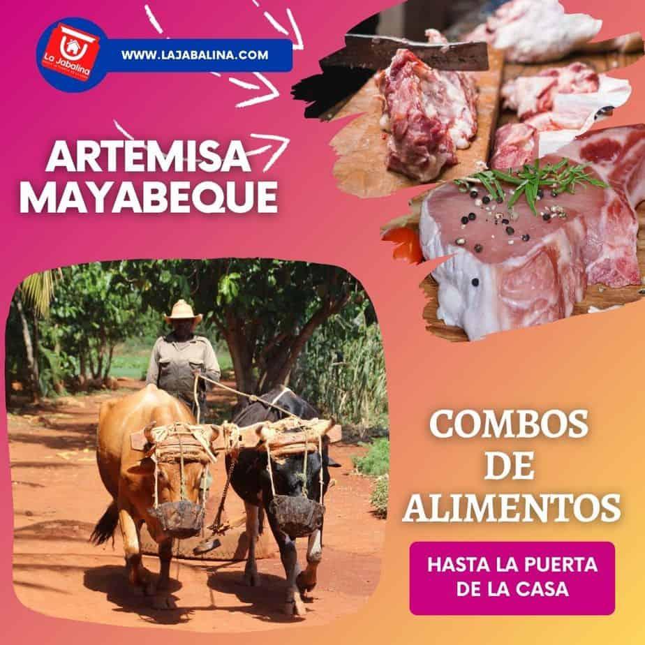 envio-comida-artemisa-mayabeque