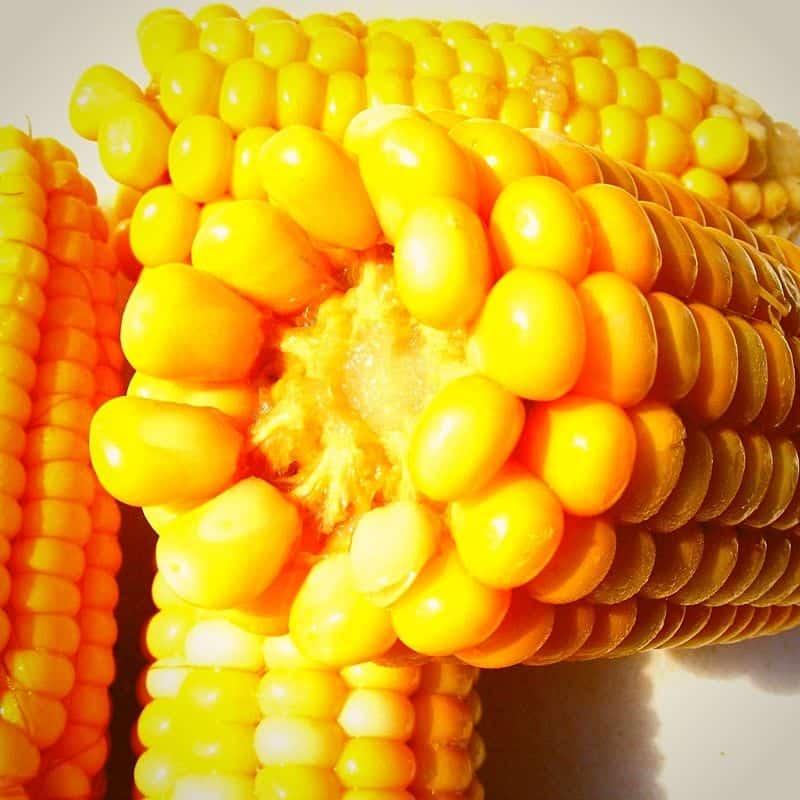 maiz-tierno-envios-cuba